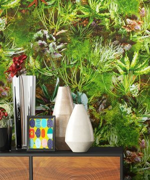 Tapete Natur Dekoration Grün Flora Pflanzen