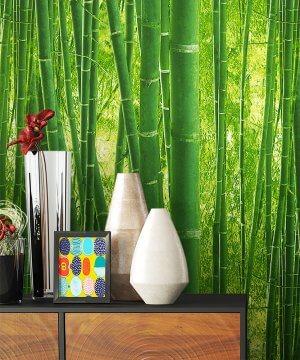Tapete Natur Dekoration Grün Flora Bambus